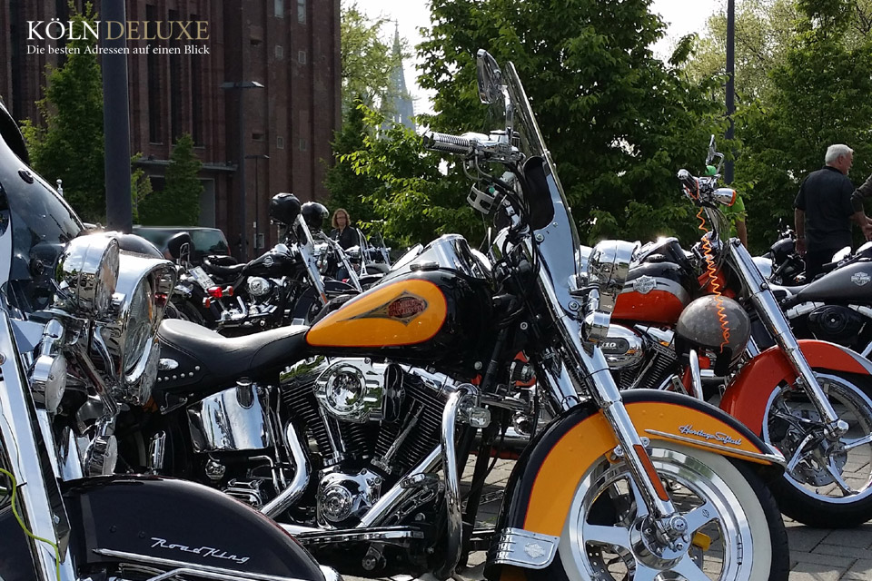 Harley Davidson mit Kölner Dom