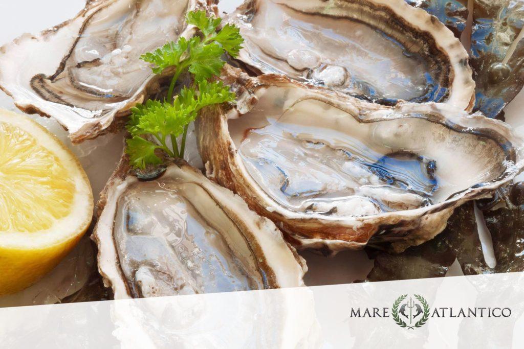Frische Austern bei Mare Atlantico in Köln