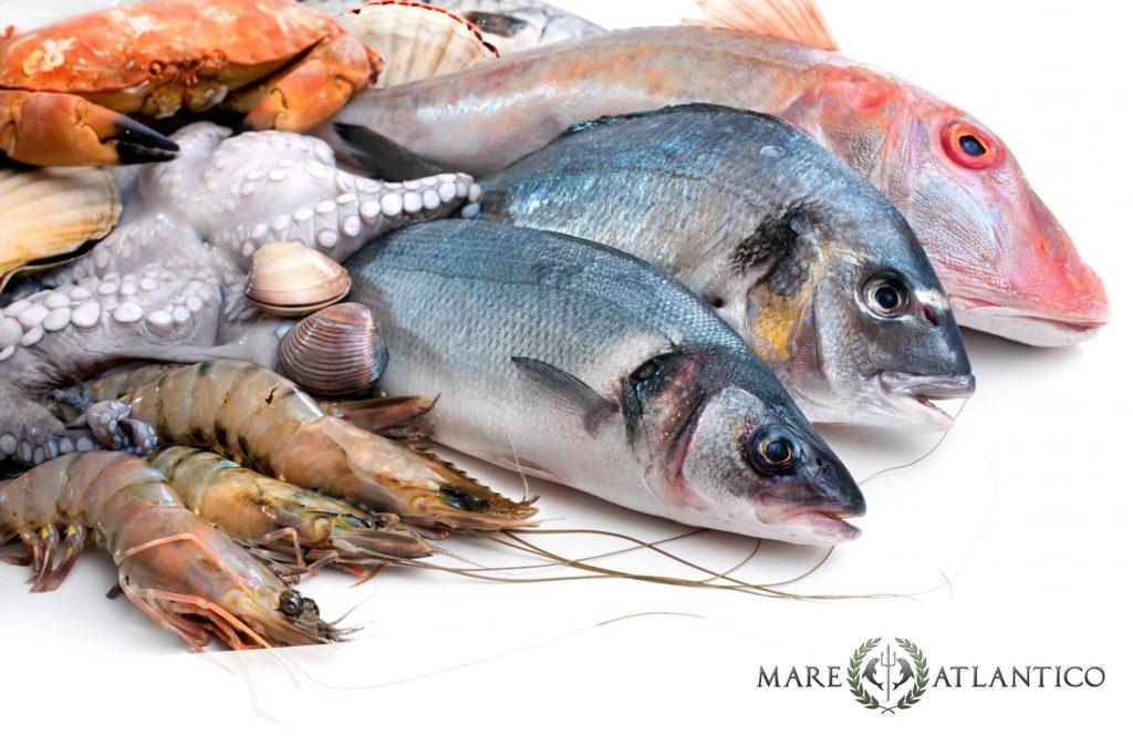 Frische Fisch-Produkte bei Mare Atlantico